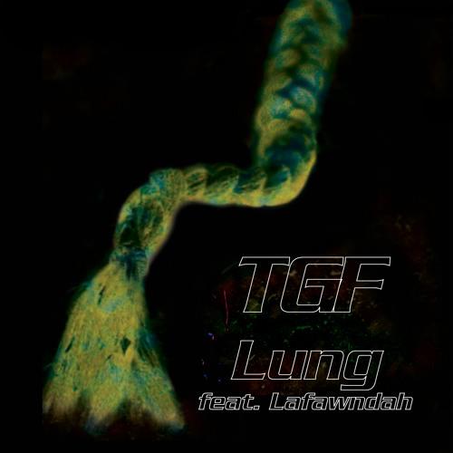 Teengirl Fantasy - Lung Ft. Lafawndah