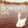 Thomas Lizzara - Wonderful Life (Bootleg) FREE DOWNLOAD