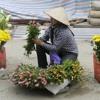 Dân nhập cư kiếm sống tại Hà Nội