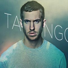 Summer - Tango (128BPM) -clear