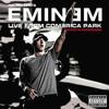 Eminem Feat. Trick Trick -  Welcome 2 Detroit (Live Comerica Park)