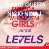 DJ MANGEL - LEVELS GIRL
