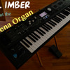 Gil Imber - Organ Sample Set (Arena/Hockey)