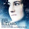 Robin Guthrie & Harold Budd - White Bird In A Blizzard Soundtrack - Official