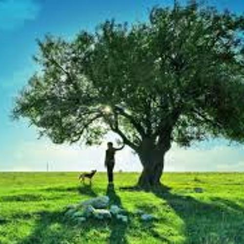 Meditación cielo y tierra