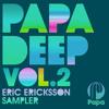 The Company - Superstar (Eric Ericksson Remix)