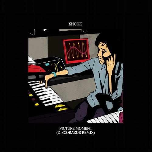 Shook - Picture Moment (DiscoRazor Remix)