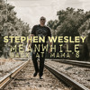 Stephen Wesley - Meanwhile Back At Mama's (Cover)