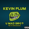 Kevin Flum - U Mad Bro? mp3