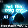 Audiophonic & Elfo - Not the only one (Out now)