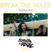 Charlie XCX - Break The Rules (Sava & Razz Remix)