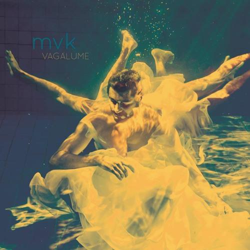 Vagalume (2014)