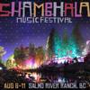 AMANI Dj Set @ Shambhala Hologram