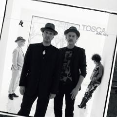 Tosca - Crazy Love(Tom Demac Remix)