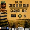 Gabriel Irie - Ganja in my Brain (Magnet Culture Riddim) - Dubwise Version