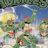 Teenage Mutant Ninja Turtles Opening Music NES