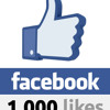 1000 Facebook Likes Mix!!!