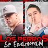 LOS PERROS SE ENAMORAN - HERNAN DJ 2014 - ANDY RIVERA Ft NICKY JAM