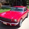 Mustang Sally (WILSON PICKETT cover)