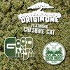 Origin One feat. Cheshire Cat - Good Ganja (Juice Foresight Remix) [Preview]