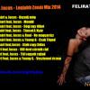 DJ Szatmári & Jucus - Legjobb Zenéi Mix 2014 mp3