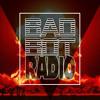 EP#1 BAD BOT RADIO