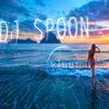 DJ Spoon & DJ Garden Fence - VÂHNI