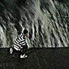 Download موسيقى أغنية سلمى (الجوكر) .... عزفي :) Mp3