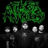 Fit For An Autopsy - Wrath