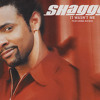It Wasnt Me - Shaggy - cumbia villera remix