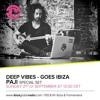 Deep Vibes - Guest PAJI - 21.09.2014