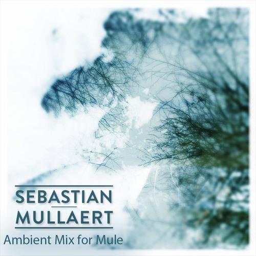 Sebastian Mullaert - Ambient Mix for Mule