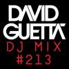 David Guetta Dj Mix #213