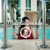 Vance Joy - Riptide (Nash Howe Remix) [Free Download by MelodicSounds]
