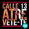 CALLE 13 - ATRÉVETE - TE ( DEEJAY DARIO BASSHALL REMIX )