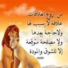 Download استماع وتحميل مهرجان ام الحنه لفريق الاحلام من موقع الصحبجيه Mp3