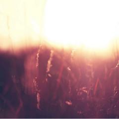 Aurora Feat. Laura Hahn - Fall For You