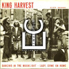 King Harvest Moonlight Eewas Cesium Remix Mp3