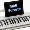 Pideme La Luna_Leo Dan_ Cañaveral MIDI