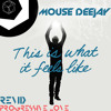 Armin Van Buuren This Is What It Feels Like Mouse Deejay Remix