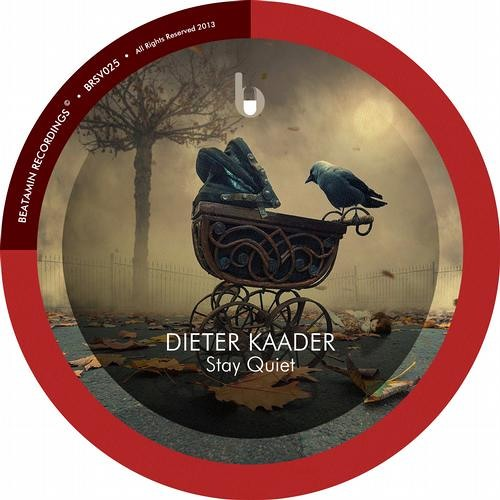 Dieter Kaader - Our Nation (Original Mix) - Beatamin Recordings