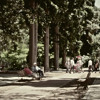 "5. Beep /6. Like The Rolling Stones (corto ""El Gracioso"" de Gabriel Fuscaldo)"