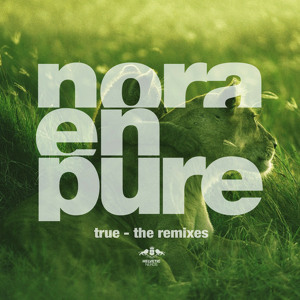 True (Lexer Remix) by Nora En Pure