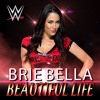 WWE Themes Songs -