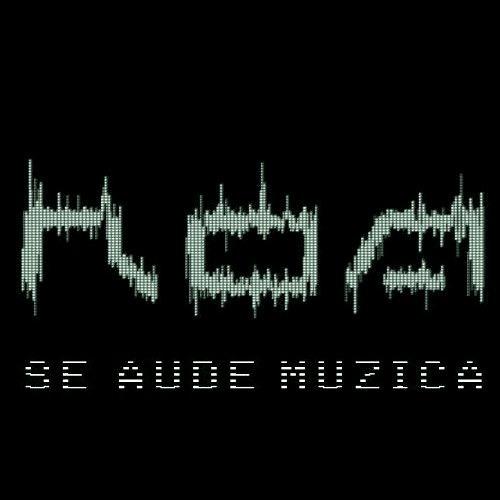ROA - SE AUDE MUZICA ( Original Version )- FREE DOWNLOAD