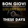 These Days (Acoustic Bon Jovi Cover by Bon Giovi)