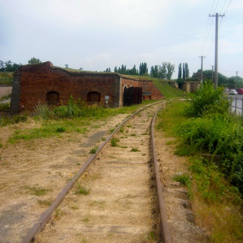 Carrying the Remains: A Boy's Promise to the Children of Terezin