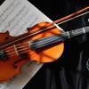 Best Violin Rap Beat Hip Hop Instrumental 2014 (FishBeats)