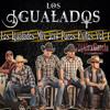 Los Igualados Mix 2014 Puros Exitos Vol. 1
