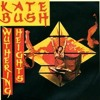 Kate Bush - Wuthering Heights (BMC Bootleg) [Snippet]